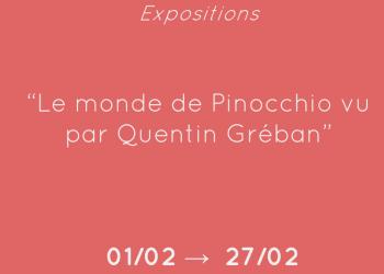 projet expo pinocchio